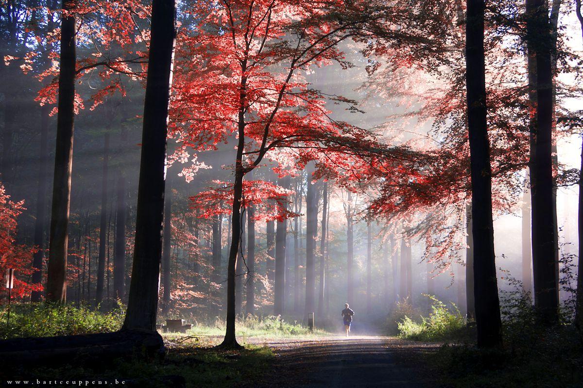 autumn is just around the corner 30