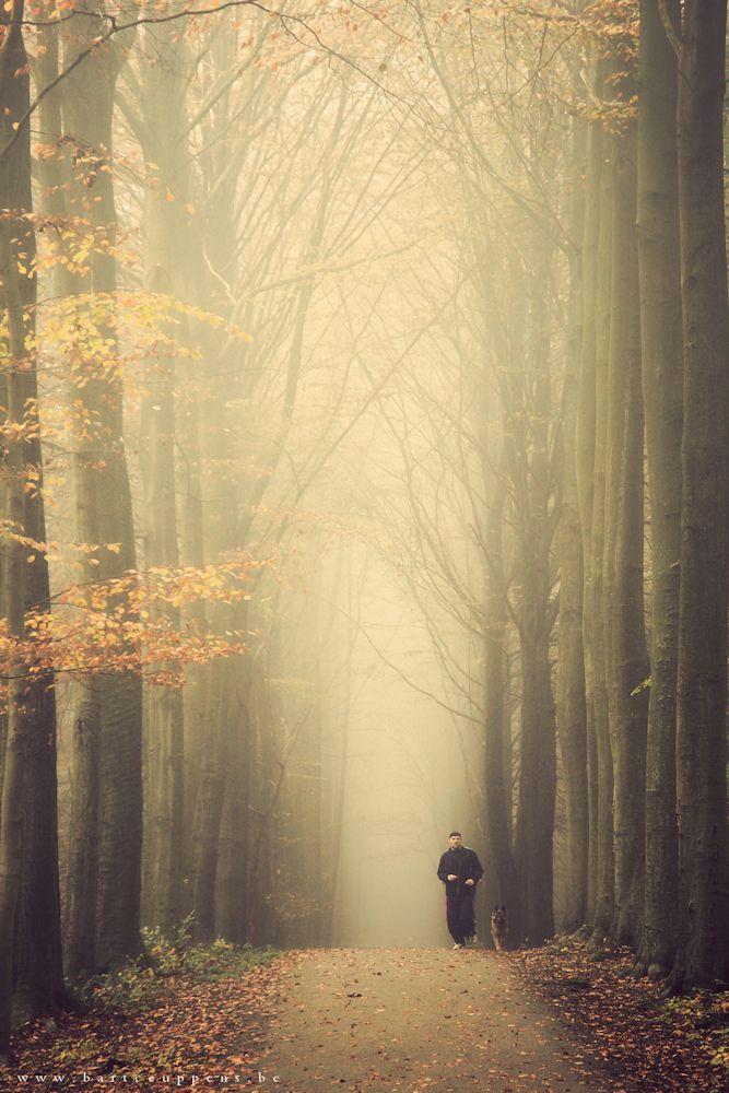 autumn memories 5 b