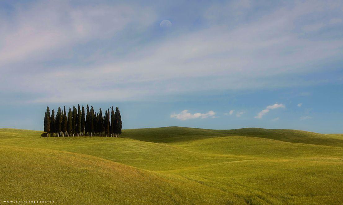 spring in tuscany 14 b